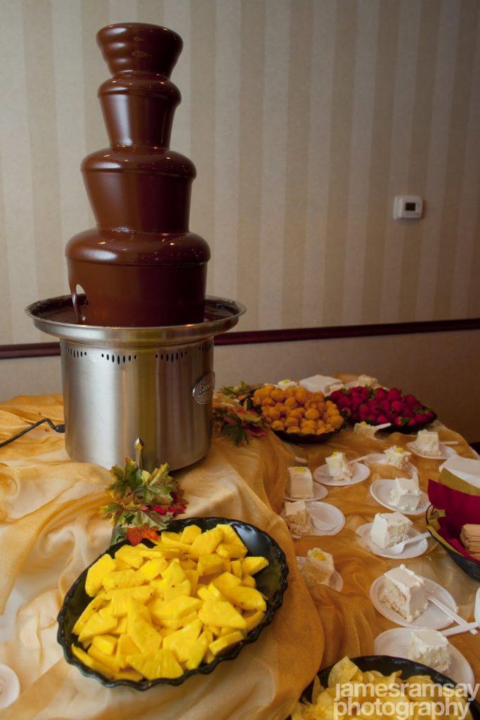 chocolate fountain 2010