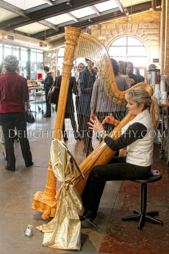 Event Harpist