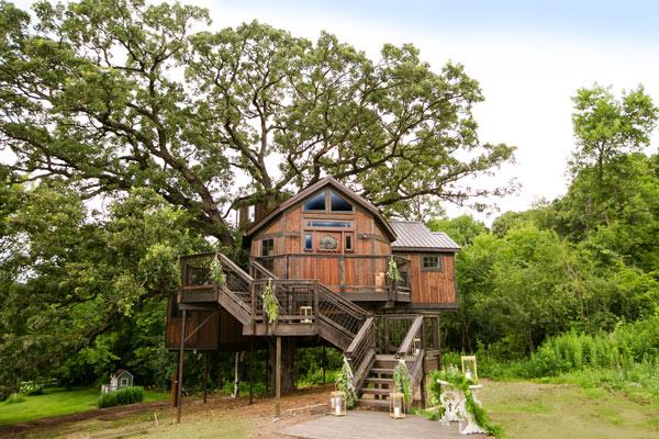 Luxury Tree House at Historic Hope Glen Farm & Vineyard