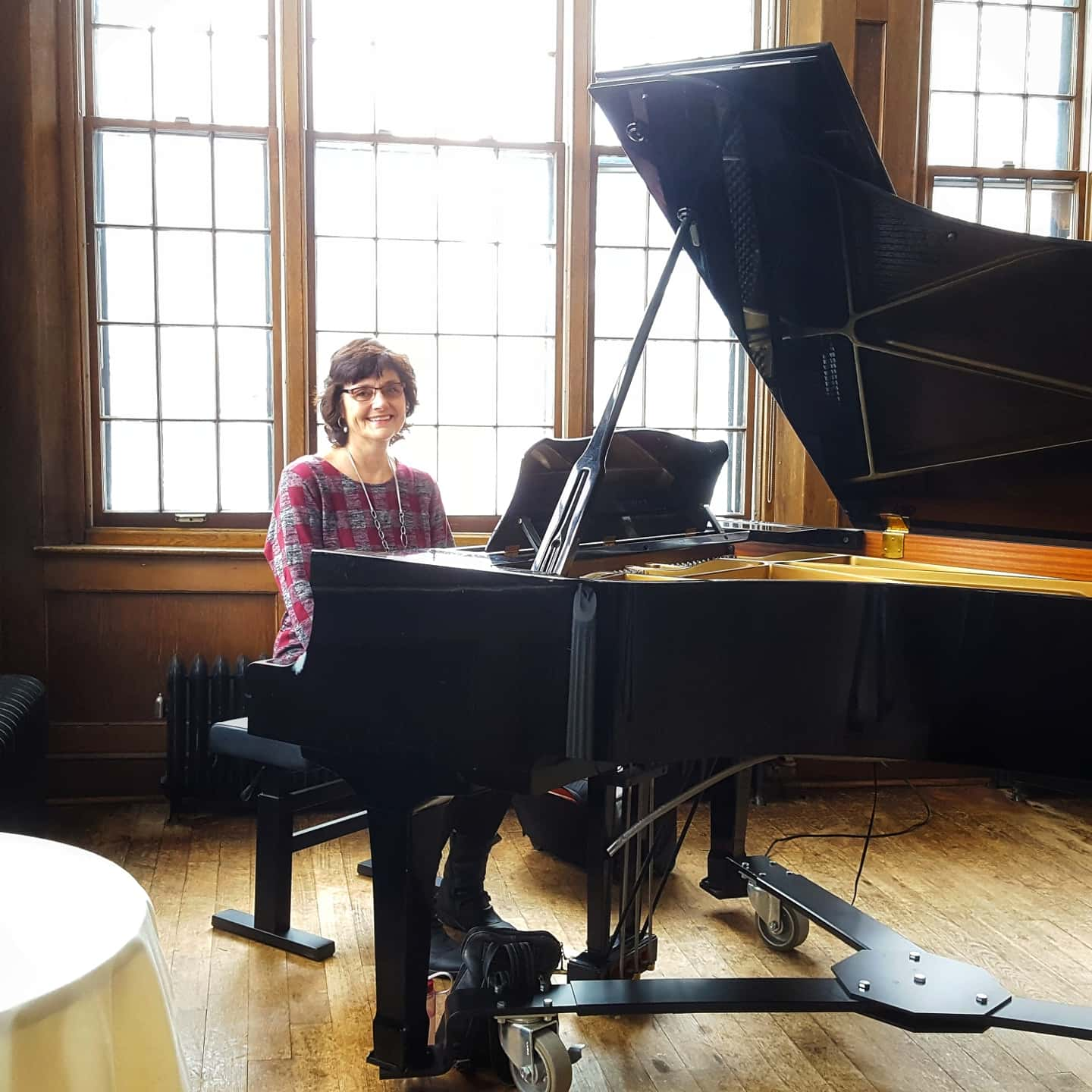 Sharon Planer, Pianist for Parties in the Twin Cities. Find a live piano player