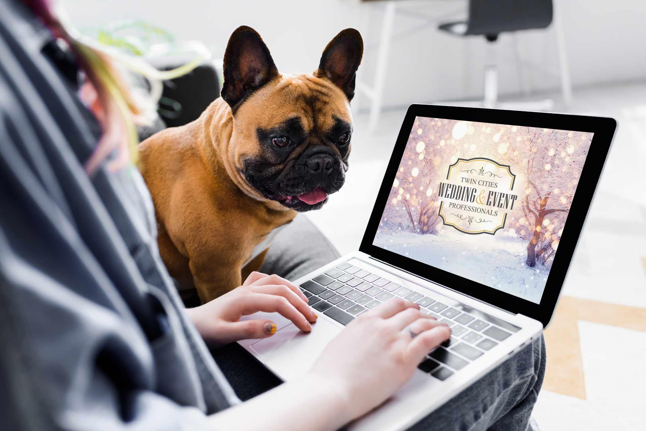 cute bulldog laptop TCWEP